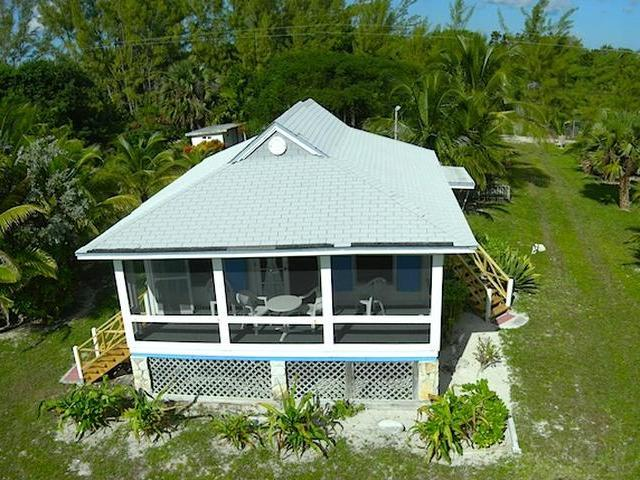 freeport singles Freeport, bahamas discover scuba diving  freeport, bahamas shark dive   dive with sharks, and explore the mystery of sunken ships on a single dive.