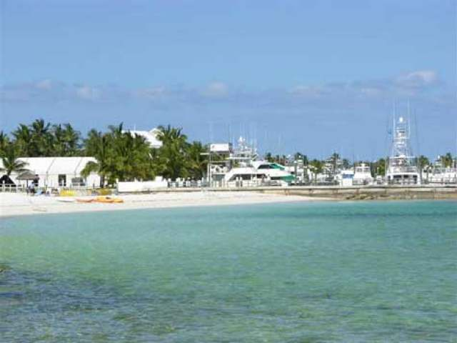 marsh harbour black singles Area: marsh harbour subdivision: great cistern island: abaco garage - single, additional pa total finished floor area: 2500 style: bahamian style.